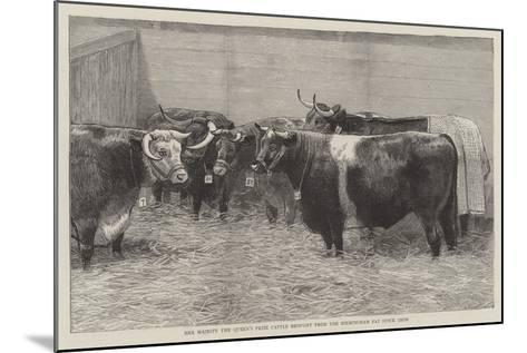 Her Majesty the Queen's Prize Cattle Brought from the Birmingham Fat Stock Show--Mounted Giclee Print