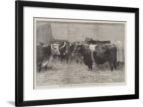 Her Majesty the Queen's Prize Cattle Brought from the Birmingham Fat Stock Show--Framed Art Print