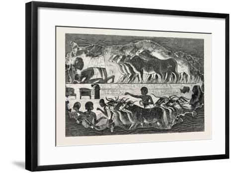 Herd of Cattle Brought before their Owner,From an Egyptian Tomb, Egypt, 1879--Framed Art Print