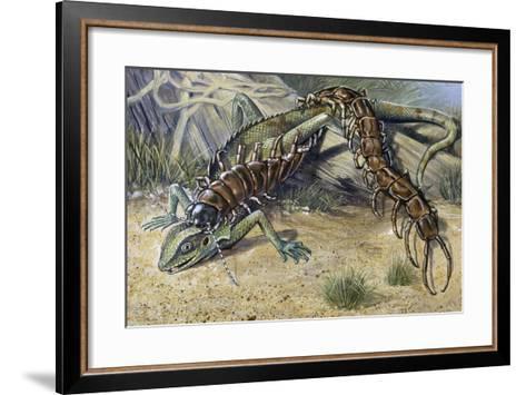 Amazonian Giant Centipede (Scolopendra Gigantea), Scolopendridae--Framed Art Print