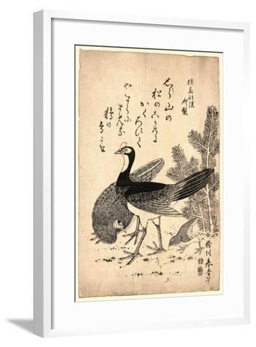 Komatsu Ni Yamadori, Wildfowl and Pine. Print Shows Wild Birds and a Young Pine Tree--Framed Art Print