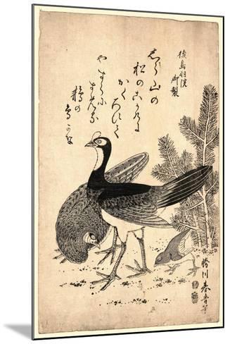 Komatsu Ni Yamadori, Wildfowl and Pine. Print Shows Wild Birds and a Young Pine Tree--Mounted Giclee Print