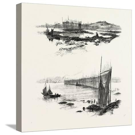 New Brunswick, Salmon Weirs, St. John Harbour, Canada, Nineteenth Century--Stretched Canvas Print