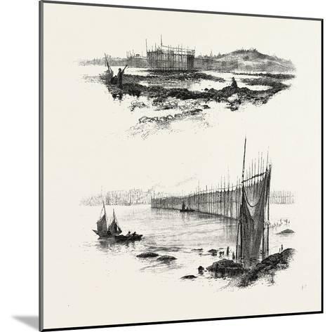 New Brunswick, Salmon Weirs, St. John Harbour, Canada, Nineteenth Century--Mounted Giclee Print
