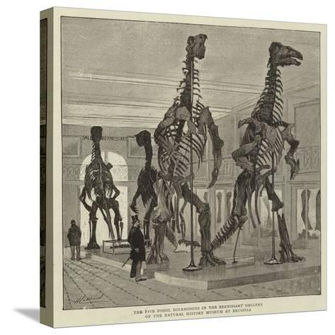 The Five Fossil Iguanodons in the Bernissart Gallery of the Natural History Museum at Brussels--Stretched Canvas Print