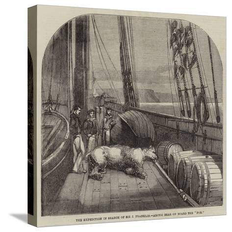 The Expedition in Search of Sir J Franklin, Arctic Bear on Board the Fox--Stretched Canvas Print