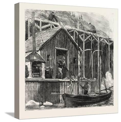 The Newfoundland Fisheries Question: British Fishing Room on the French Shore, Canada, 1890--Stretched Canvas Print