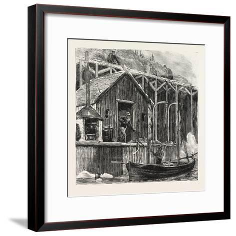 The Newfoundland Fisheries Question: British Fishing Room on the French Shore, Canada, 1890--Framed Art Print