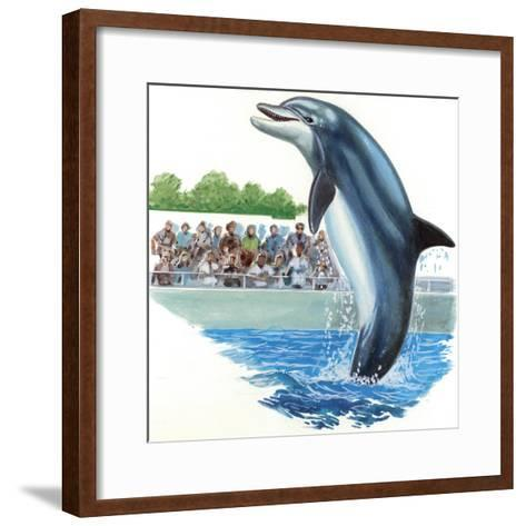 Bottlenose Dolphin or Bottle-Nosed Dolphin (Tursiops Truncatus) During Performance in Dolphinarium--Framed Art Print