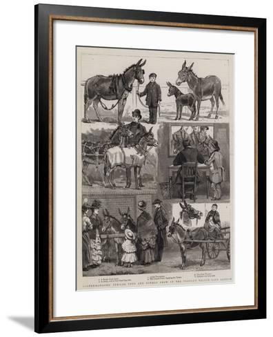 Costermongers' Jubilee Pony and Donkey Show at the People's Palace, East London--Framed Art Print