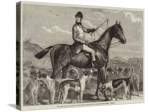 Mr Williamson, Huntsman to the Duke of Buccleuch, on His Favourite Horse Norman--Stretched Canvas Print