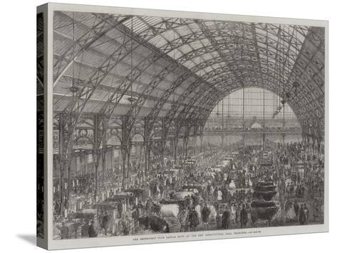 The Smithfield Club Cattle Show at the New Agricultural Hall, Islington--Stretched Canvas Print