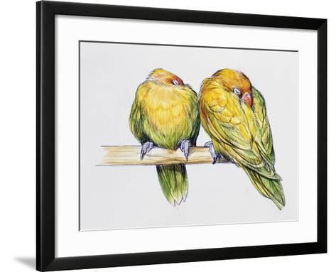 Pair of Fischer's Lovebirds While Sleeping (Agapornis Fischeri), Psittacidae--Framed Art Print