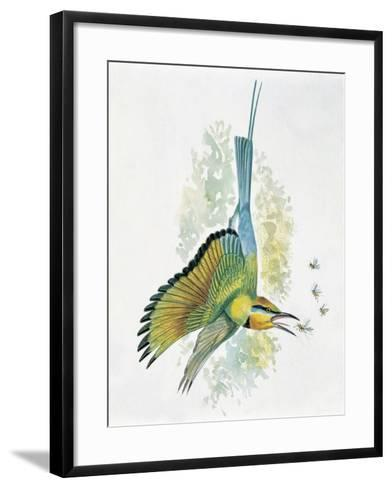 Close-Up of a Blue-Tailed Bee-Eater (Merops Philippinus) Flying and Eating Insects--Framed Art Print