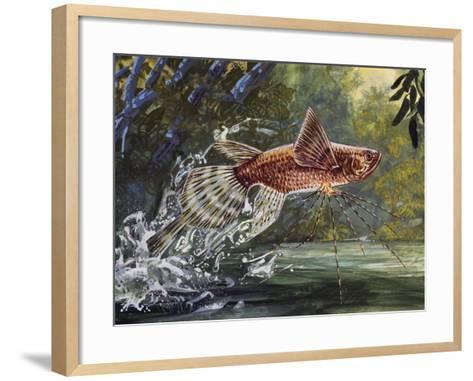 Freshwater Butterflyfish or African Butterflyfish (Pantodon Buchholzi), Pantodontidae--Framed Art Print