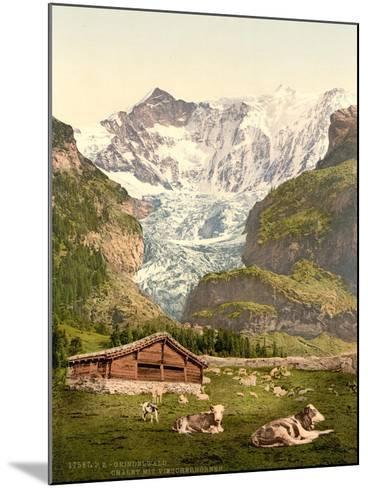 Grindelwald, Chalet and Vischerhorn, Bernese Oberland, Switzerland, C.1890-C.1900--Mounted Giclee Print
