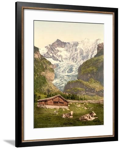 Grindelwald, Chalet and Vischerhorn, Bernese Oberland, Switzerland, C.1890-C.1900--Framed Art Print