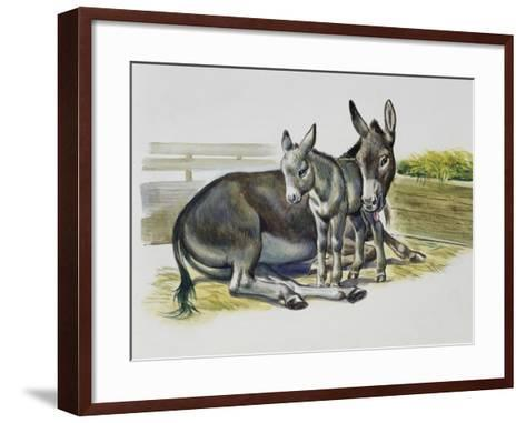 Foal and Jenny of African Wild Ass or African Wild Donkey (Equus Africanus), Equidae--Framed Art Print