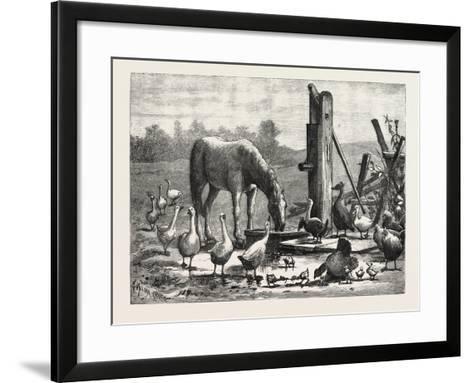A Fashionable Watering Place. Horse, Geese, Chicken, Outdoor, Farm, 1876--Framed Art Print