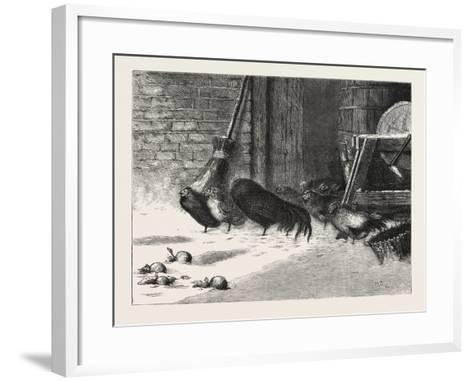 Waiting for a Break. 1876, Chicken, Chickens, Bird, Birds, Fowl, Fowls--Framed Art Print