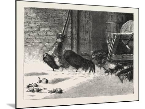 Waiting for a Break. 1876, Chicken, Chickens, Bird, Birds, Fowl, Fowls--Mounted Giclee Print