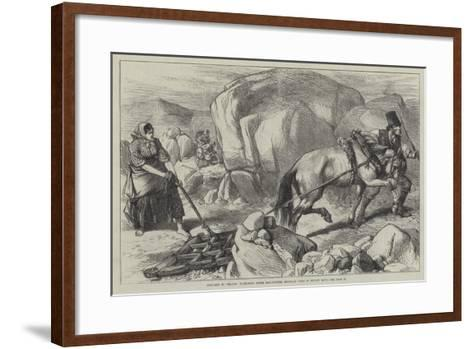 Sketches in Ireland, Harrowing under Difficulties, Mountain Farm in County Mayo--Framed Art Print