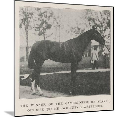 The Winner of the Cambridgeshire Stakes, 30 October, Mr Whitney's Watershed--Mounted Giclee Print