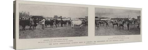 The Royal Agricultural Society's Show at Carlisle, the Sixty-Fourth and Last Provincial Meeting--Stretched Canvas Print