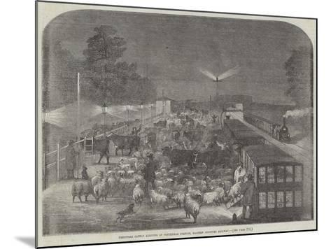 Christmas Cattle Arriving at Tottenham Station, Eastern Counties Railway--Mounted Giclee Print