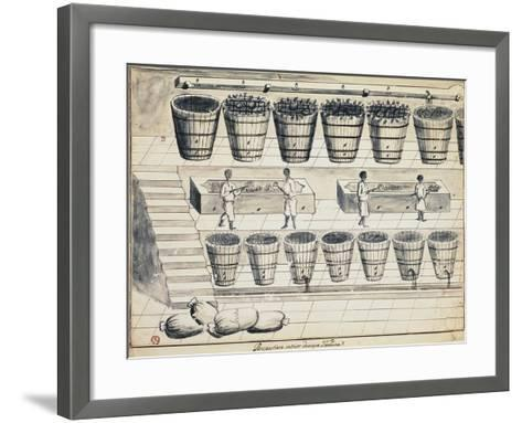 Processing Cycle for Extracting Sugar from Beet, Watercolor, Portugal, 19th Century--Framed Art Print