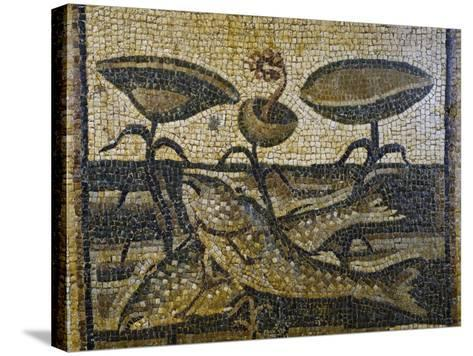 Two Fish Between the Waterlilies by Daphne, Mosaic, Roman Civilisation, 5th Century--Stretched Canvas Print
