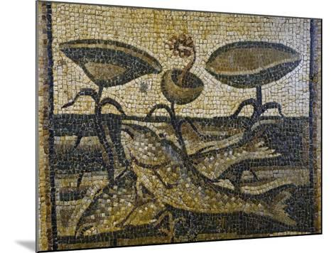 Two Fish Between the Waterlilies by Daphne, Mosaic, Roman Civilisation, 5th Century--Mounted Giclee Print