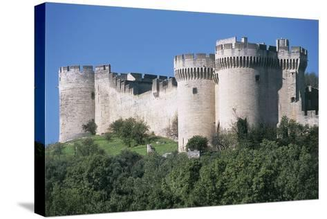 Trees in Front of a Castle, Fort Saint Andre, Languedoc-Roussillon, Villeneuve-Les-Avignon, France--Stretched Canvas Print