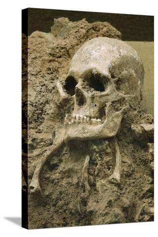 Skull from Escoural Cave. Neoli?Tco Middle-End. Archaeology Museum. Montemor-O-Novo. Portugal--Stretched Canvas Print