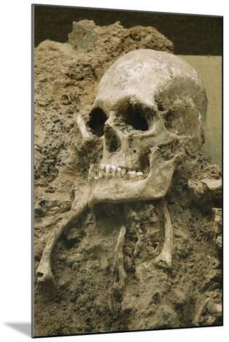 Skull from Escoural Cave. Neoli?Tco Middle-End. Archaeology Museum. Montemor-O-Novo. Portugal--Mounted Photographic Print