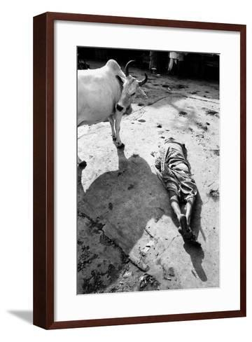 Prostrate Man Praying and Cow, Jagannath Temple, Puri, Orissa, India, 1977--Framed Art Print