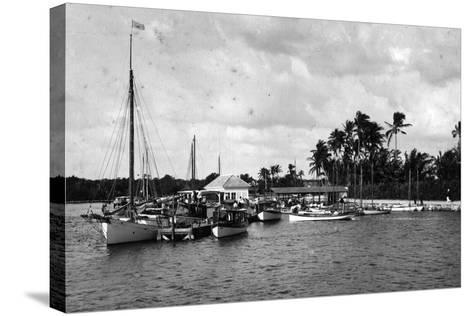 Sailboats Docked at the Royal Palm Hotel Boathouse at the Entrance to the Miami River, C.1900--Stretched Canvas Print