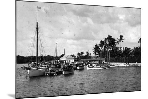 Sailboats Docked at the Royal Palm Hotel Boathouse at the Entrance to the Miami River, C.1900--Mounted Photographic Print