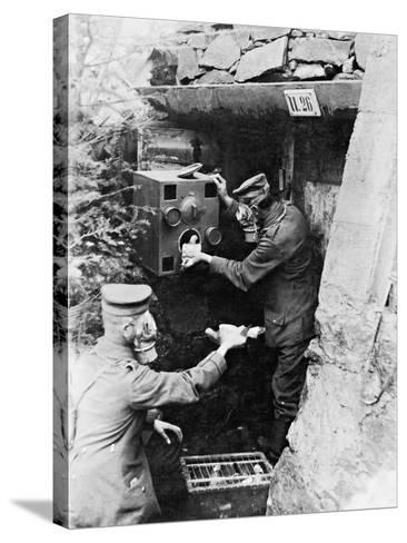 Gas Protection Chamber for Carrier Pigeons Used in German Shelters at the Front, 1917--Stretched Canvas Print