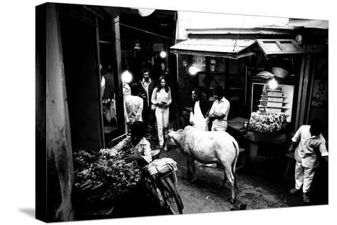 People and Cow in the Narrow Streets of Varanasi, Uttar Pradesh, India, 1982--Stretched Canvas Print