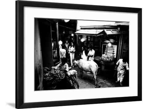 People and Cow in the Narrow Streets of Varanasi, Uttar Pradesh, India, 1982--Framed Art Print