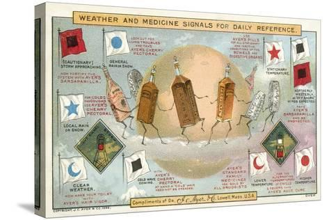 Weather and Medicine Signals for Daily Reference--Stretched Canvas Print