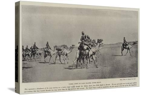 Camel Corps at Wadi Halfeh, Upper Egypt--Stretched Canvas Print