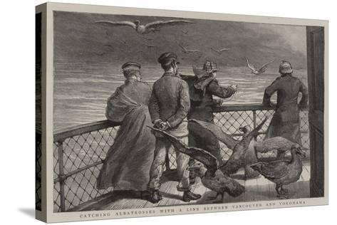 Catching Albatrosses with a Line Between Vancouver and Yokohama--Stretched Canvas Print