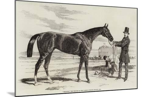 Malacca, the Winner of the Cambridgeshire Stakes, 1856--Mounted Giclee Print