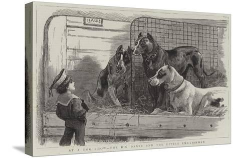 At a Dog Show, the Big Danes and the Little Englishman--Stretched Canvas Print