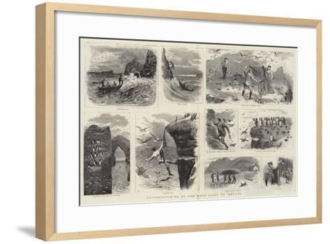 Puffin-Catching on the West Coast of Ireland--Framed Art Print