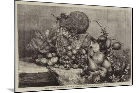 Group of Indian Fruit from the Island of Java--Mounted Giclee Print