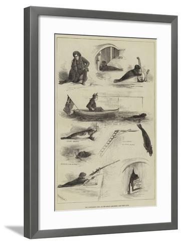 The Performing Seal at the Royal Aquarium--Framed Art Print