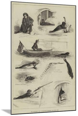 The Performing Seal at the Royal Aquarium--Mounted Giclee Print
